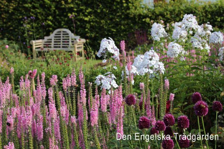 Välkommen till Den Engelska Trädgården på Svabesholm