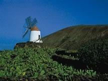 Descubre Lanzarote con Iberojet