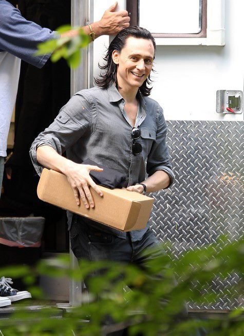 Just another day for Loki, moving boxes and such