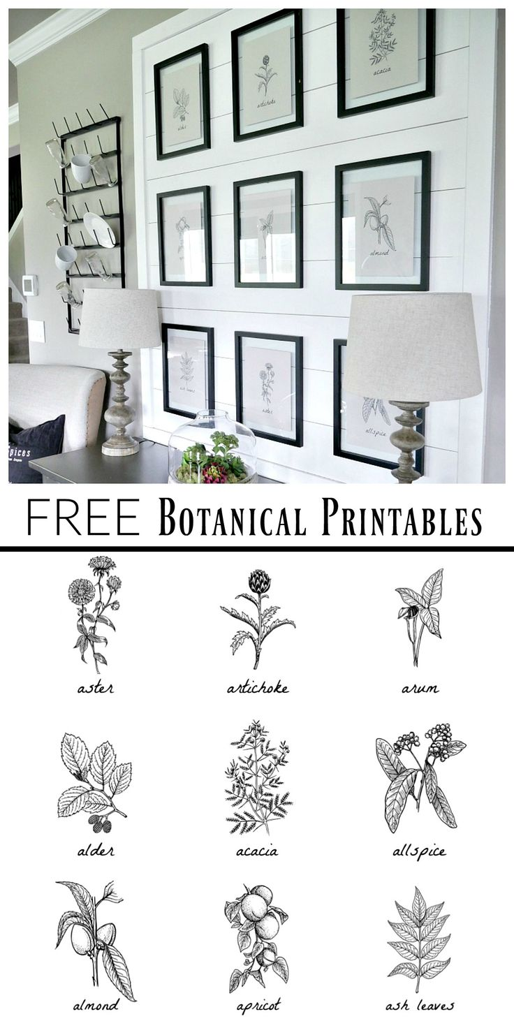 Best 25  Black and white prints ideas on Pinterest artwork art canvas