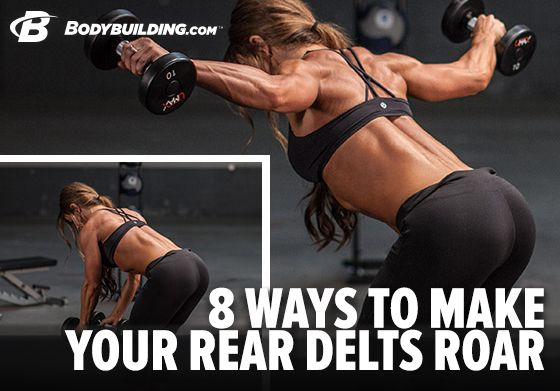 8 Ways to Make Your Rear Delts Roar! Bodybuilding.com