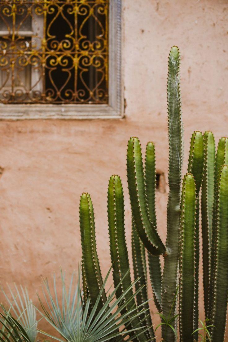 beldi country club / destination wedding photographer / cactus
