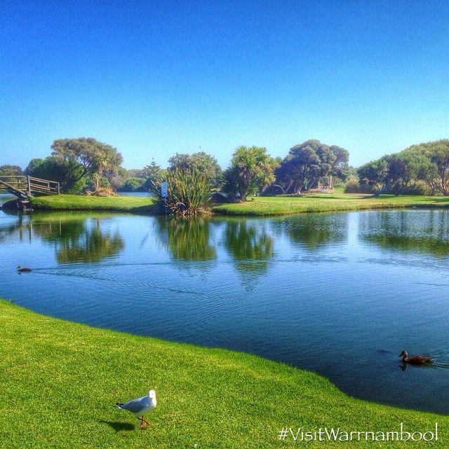 Lake Pertobe from @visitwarrnambool on Instagram #visitWarrnambool #Warrnambool