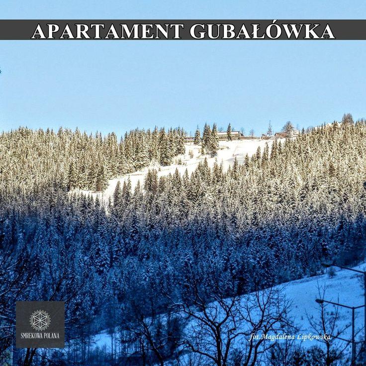 Apartament Gubałówka - zapraszamy! #poland #polska #malopolska #zakopane #mountain #tatry #place #winter #zima #destination
