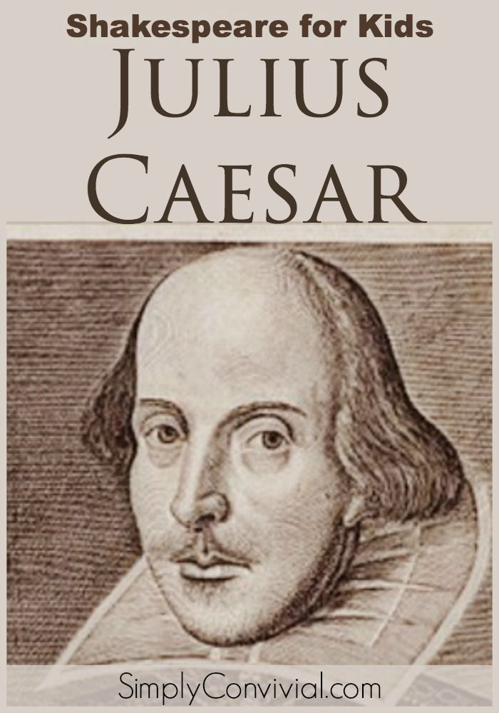 essay julius caesar assassination The julius caesar essay history when someone mentions the name julius caesar the group of conspirators butchered caesar until his death on the footsteps of.