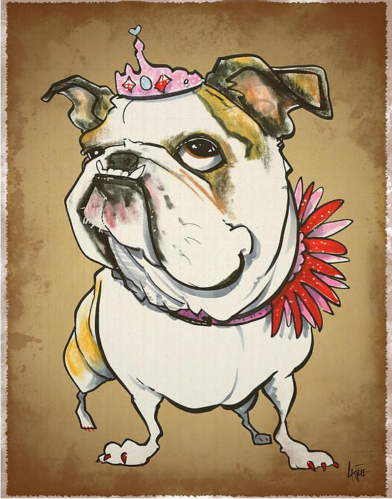 Bulldog caricature by John LaFree