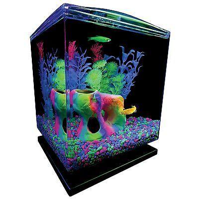 25 best ideas about mini aquarium on pinterest fun diy for 5 gallon fish tank heater