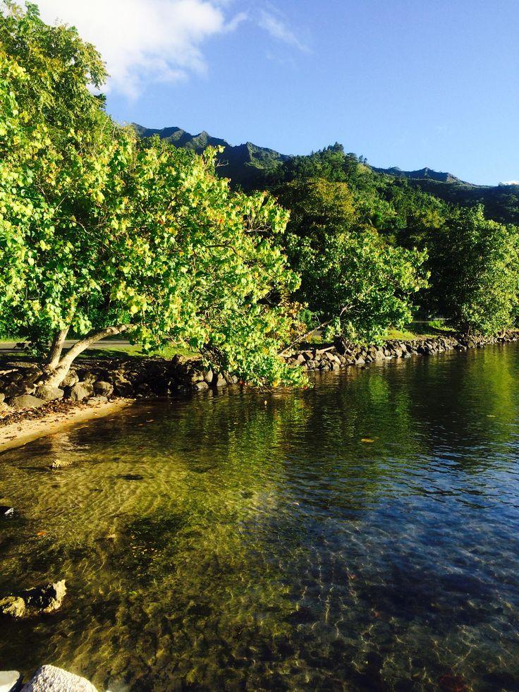 Fantastici colori #polinesia #verde #mare #riflessi