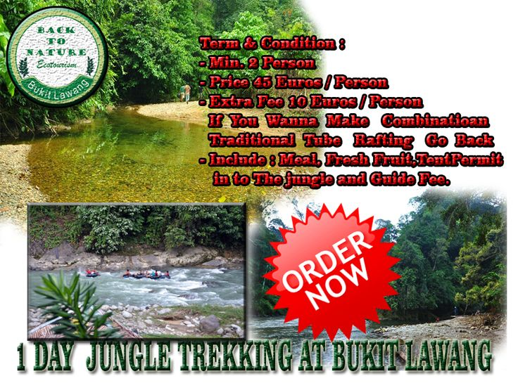 1 DAY JUNGLE TREKKING
