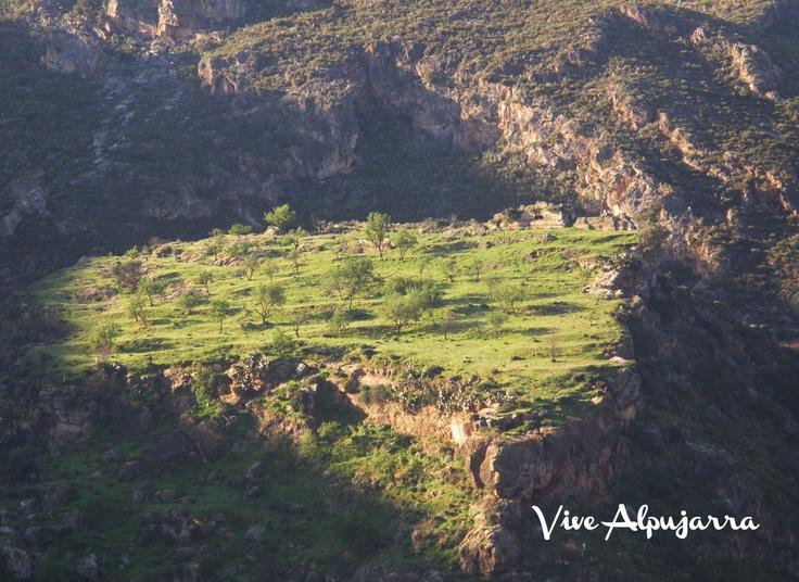 El Castillo desde el valle del Guadalfeo. Vive Alpujarra