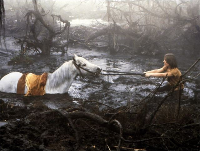 The Neverending Story/L'Histoire sans fin/ La Historia sin fin (1984)   Wolfgang Petersen