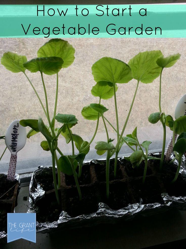 Easy steps to starting a vegetable garden