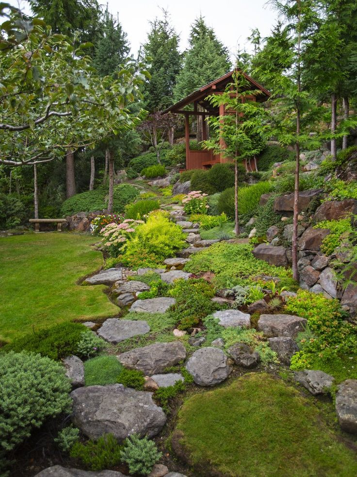 Gary Necci used mostly one-man rocks he could haul in and place himself to create planting pockets and steps up and down his steep West Seattle garden. (Mike Siegel/The Seattle Times)