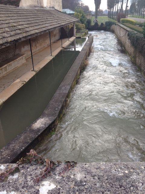 High water in Savigny-lès-Beaune