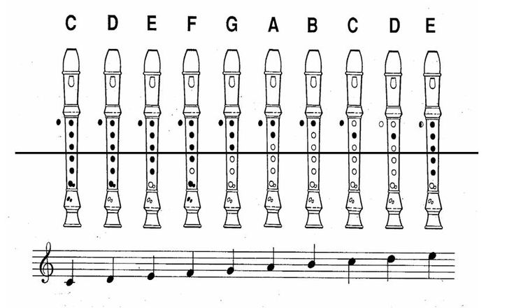 interactive recorder chart  u2013 learn how to play those notes