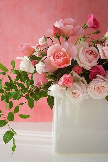Pink and light pink roses by lesley