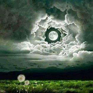 Moonlit meadow. Image found online