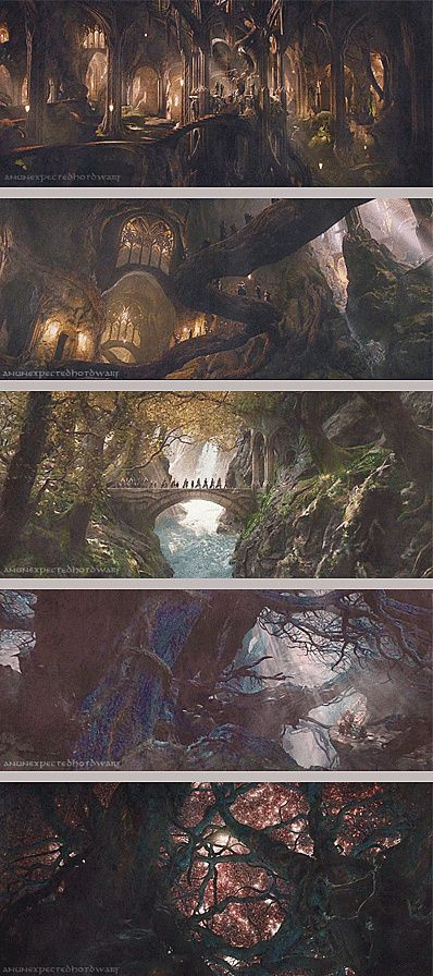 Mirkwood scenery - The Hobbit: The Desolation of Smaug.