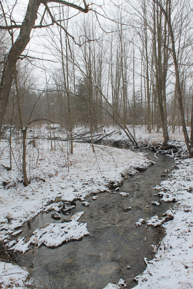 late winter meets early spring in the sugar bush