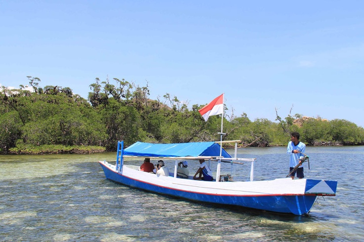 Fisherman boats are available for rent at the nearby harbor for island hopping. One of the boats insisted to float closer to the fruit bat island. The island is accessible only at noon during the high tide.