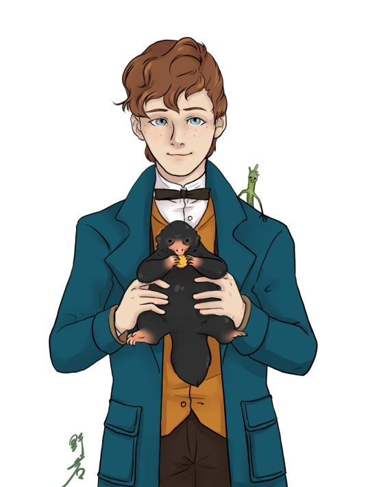 Newt Svamander - Fantastic Beasts - Guys, go watch this movie!