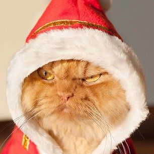 """Oh you're just gonna stay on the naughty list, huh?"" 