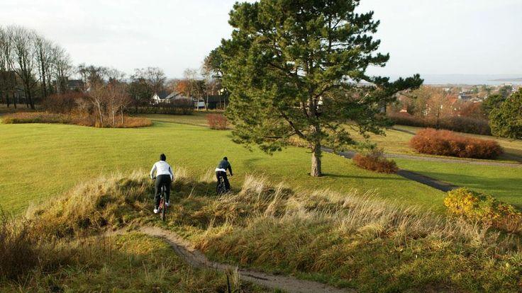 Gåtur i Mølleparken Aalborg