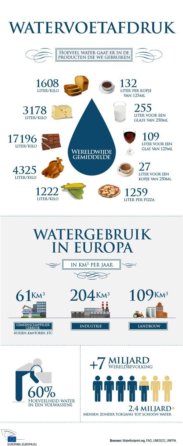 Water: waarom het belangrijk is