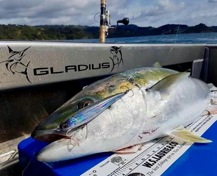 PROP 140mm 62g http://www.fishinclures.com/hard-baits/54-prop.html  #fishinclures #oceanangler #ttlures #gonefishing #jigging #stickbaits #saltwaterfishing #boatfishing #kingfish #newzealand #newzealandfishing #gladiussportfishing #ownerhooks