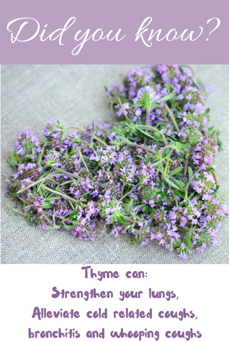 Did you know? Read more on Herbs that can assist with winter colds on healthyliving-herbs