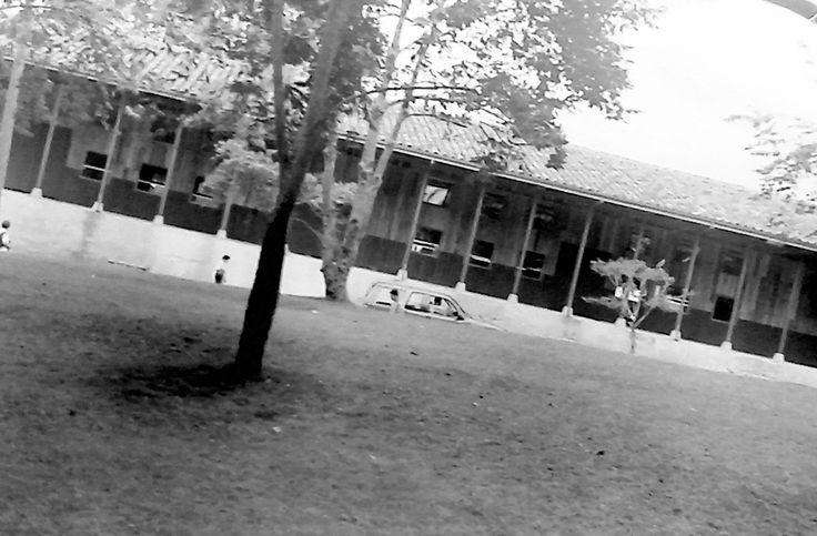 Facultad de Arquitectura Universidad Nacional - Manizales