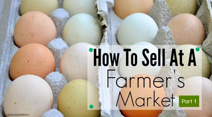 Life At Cobble Hill Farm: Making Money On A Homestead: How To Sell At A Farmer's Market Part 1