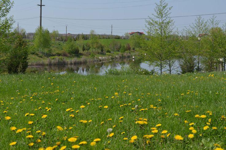 Snagov Recreational Area