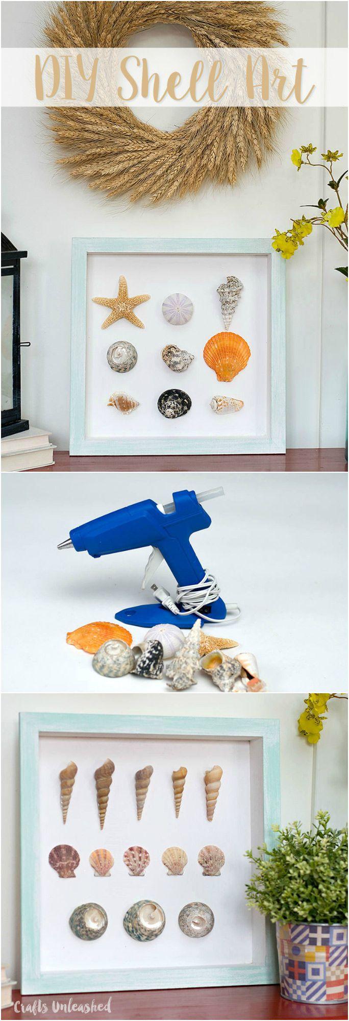DIY Shell Specimen Wall Art