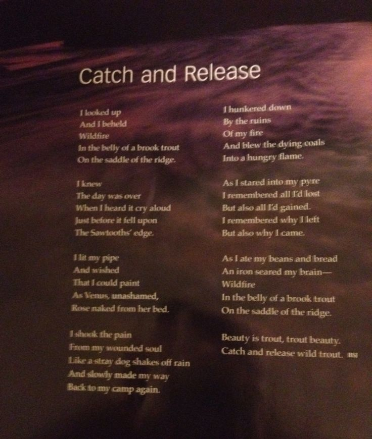 1000 Images About Fly Fishing Poetry On Pinterest
