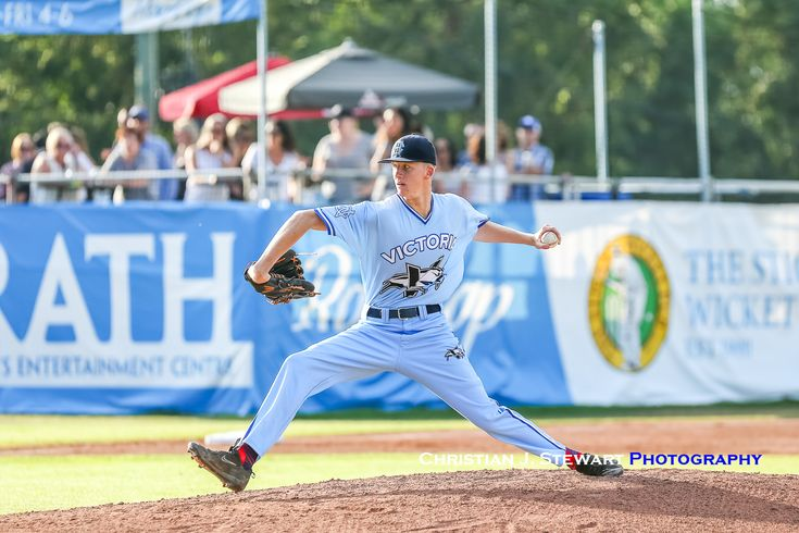 Harbourcats Win Series Over Five Time Wcl League Champion Corvallis Knights Isn League Champion Corvallis
