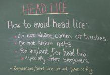 How to Kill Head Lice Naturally?