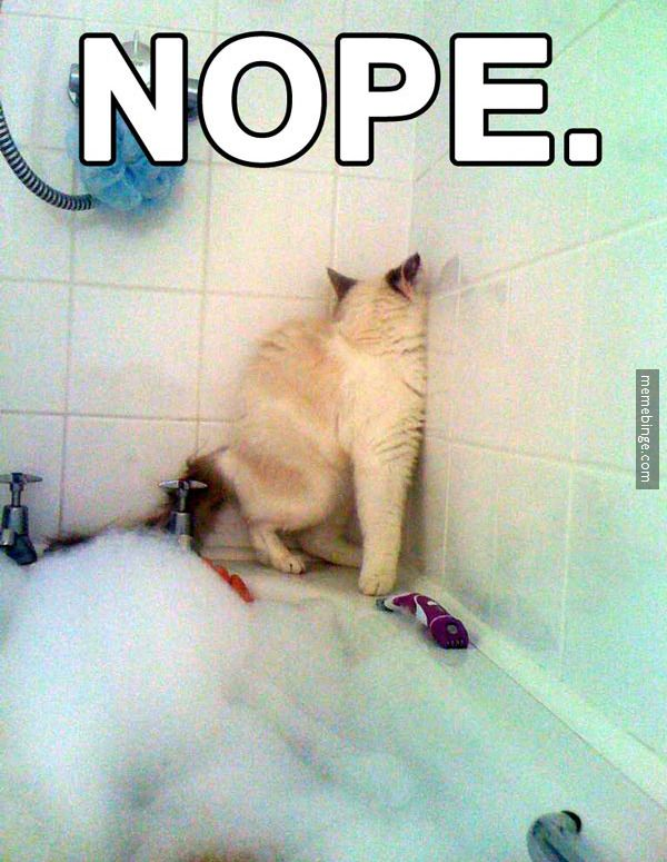 No thanks, I already showered today.