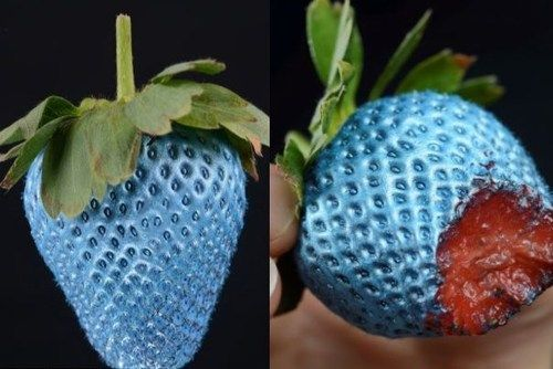 Edible spray paint - has no taste and makes everyday food look AWESOME!