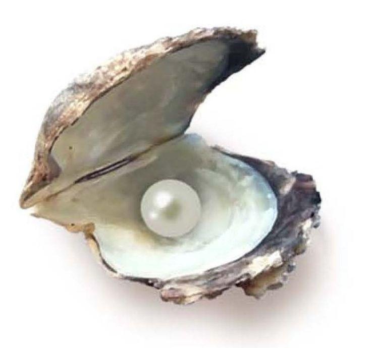 Come fare a riconoscere le perle vere
