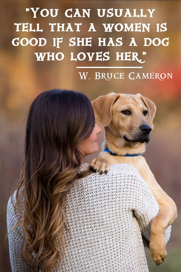 You Can Usually Tell That A Man Is Good If He Has A Dog Who Loves Him In 2020 Dog Quotes Love Dogs Dog Lovers