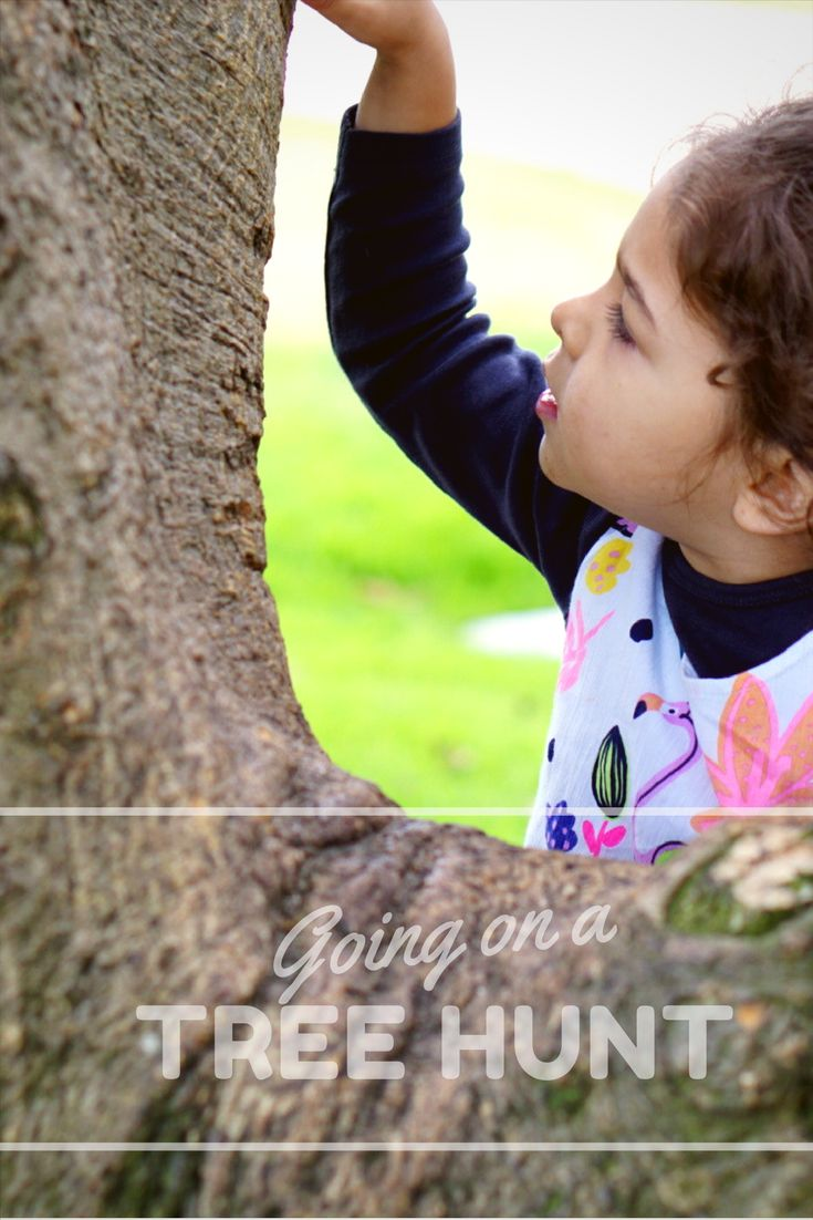 Going on a Tree Hunt – Binkies & Baubles