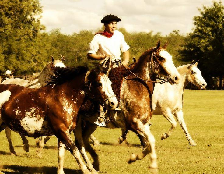The Beret Project: San Antonio de Areco Argentina