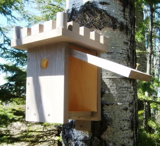 90 best swallow bird house plans images on pinterest | bird house