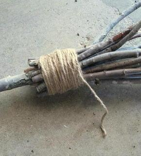 How to make a your own Quidditch broom out of yard waste.