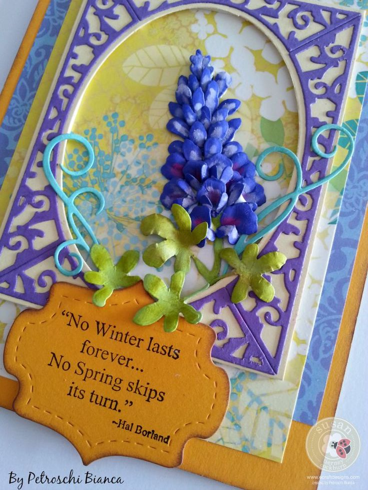 Petroschi Bianca -Blue Bonnet  (8)
