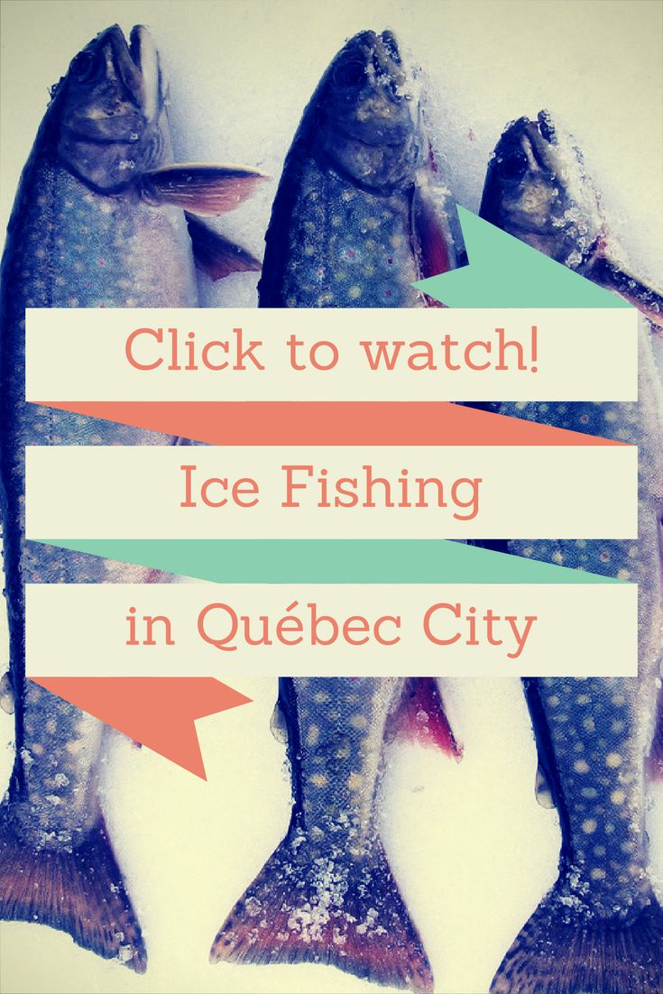 ♥Bonjour fellow travelers!♥ Today, my brother and I try some ice fishing in Quebec City, more precisely at the Village Nordik in the Old Port.