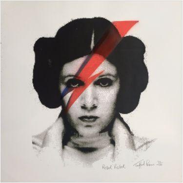 """""""Rebel Rebel"""" von Trafford Parsons, limitierter Siebdruck - Hove - Drucke › Star Wars Kunst auf Kunstplaza"""