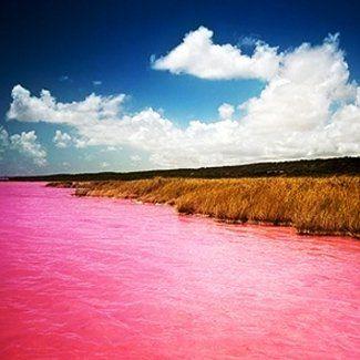 Розовое озеро Хиллер - природный феномен Австралии