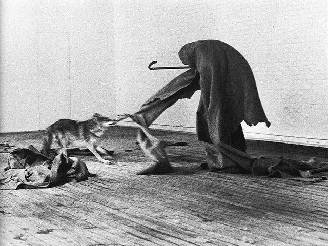 Joseph Beuys - I Like America and America Likes Me , Coyote, 1974 (performance)